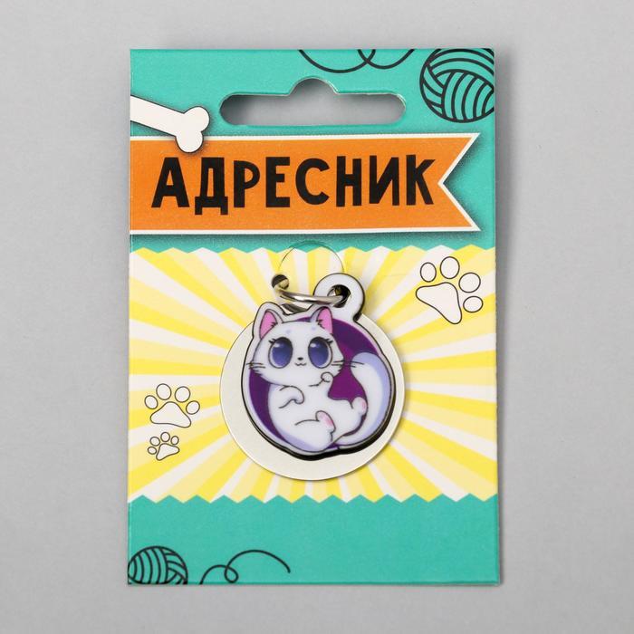 Адресник под гравировку + подвес акрил «Белая кошечка», 3х3 см