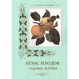 Атлас плодов. Садовые деревья. Пантилеева А.