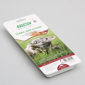 Трава Titbit для кошек овес Ош