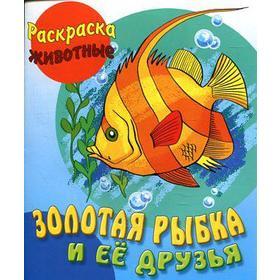Золотая рыбка и ее друзья (с образцами). Кузьмин С.