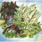 Хитрый заяц - Фото 2
