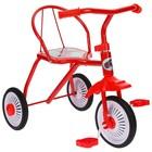 """Велосипед трёхколёсный Micio TR-311, колёса 8""""/6"""", цвет красный, голубой, розовый, зелёный, синий, жёлтый - Фото 4"""