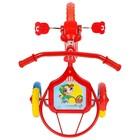 """Велосипед трёхколёсный Micio TR-313, колёса 10""""/8"""", цвет красный, голубой, розовый, зелёный, синий, жёлтый - Фото 3"""