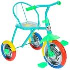 """Велосипед трёхколёсный Micio TR-313, колёса 10""""/8"""", цвет красный, голубой, розовый, зелёный, синий, жёлтый - Фото 4"""