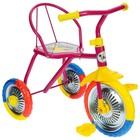 """Велосипед трёхколёсный Micio TR-313, колёса 10""""/8"""", цвет красный, голубой, розовый, зелёный, синий, жёлтый - Фото 5"""