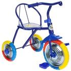 """Велосипед трёхколёсный Micio TR-313, колёса 10""""/8"""", цвет красный, голубой, розовый, зелёный, синий, жёлтый - Фото 7"""