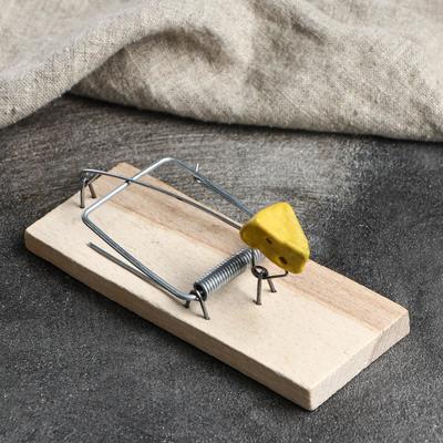"""Мышеловка деревянная """"Ретро"""", 15 х 5,5 см - Фото 1"""