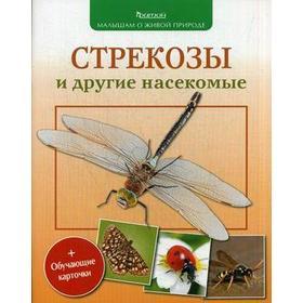 Стрекозы и другие насекомые (с обучающими карточками и раскрасками)