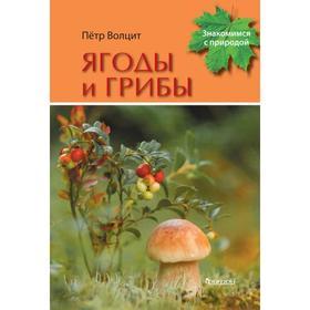 Ягоды и грибы. Волцит П.