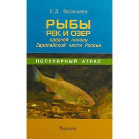 Екатерина Васильева: Рыбы рек и озёр средней полосы Европейской части России
