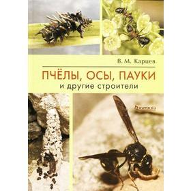 Пчёлы, осы, пауки и другие строители. Карцев В.