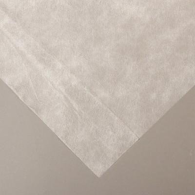 Материал укрывной, 10 × 1,6 м, плотность 42, с УФ-стабилизатором, белый, «Агротекс»