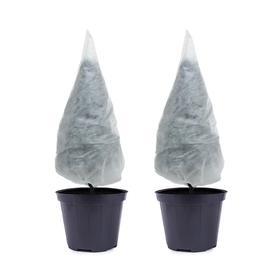 Чехол для растений, конус на завязках, 80 × 75 см, спанбонд с УФ-стабилизатором, плотность 60 г/м², набор 2 шт., белый Ош