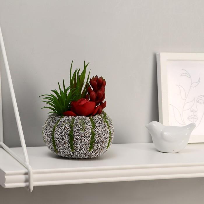 "Бонсай ""Алоэ"" цветок, камень в полоску, 10х14 см,"