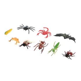 Набор животных насекомых «Природа», МИКС Ош
