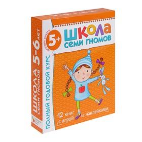 Полный годовой курс от 5 до 6 лет. 12 книг с играми и наклейками. Денисова Д.