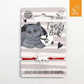 Подвес для кошки и браслет на руку «Британский кот» Ош