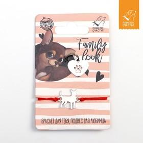 Подвес для собаки и браслет на руку «Чихуахуа» Ош