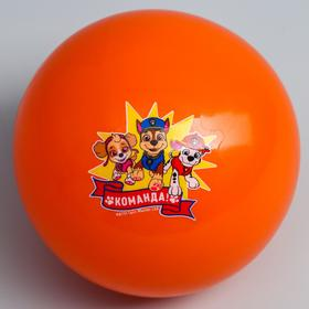 Мяч детский Paw Patrol