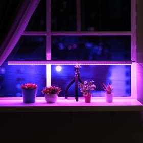 Светильник для растений, 14 Вт, 15 мкмоль/с, длина 900мм, высота установки свет 200 мм Ош