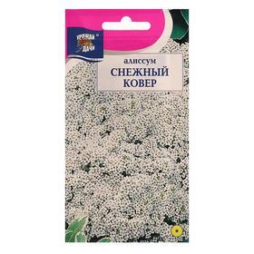 """Семена цветов Цв Алиссум """"Снежный ковер"""",0,1 гр"""