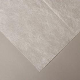 Материал укрывной, 10 × 1,6 м, плотность 42, с УФ-стабилизатором, белый Ош