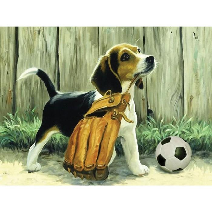 Алмазная вышивка на раме 30x40 с частичным заполнением «Пёс с мячом»