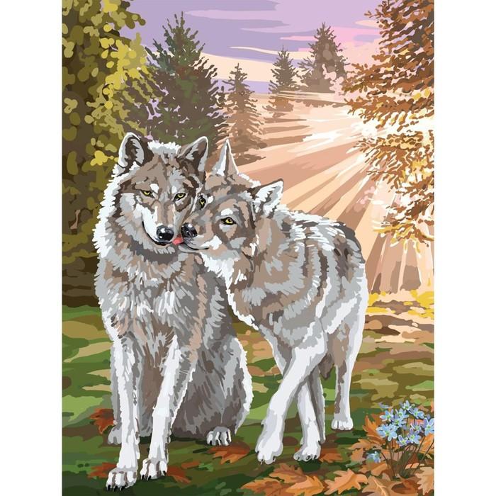Алмазная вышивка на раме 30x40 с полным заполнением «Волки»