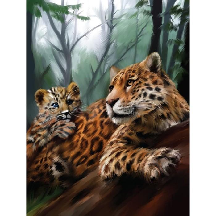 Алмазная вышивка на раме 30x40 с полным заполнением «Леопарды»