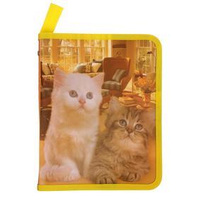 Папка для тетрадей формат А5 на молнии с 3-х сторон Две кошки Ош