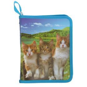 Папка для тетрадей формат А5 на молнии с 3-х сторон Три кошки Ош