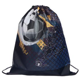 Мешок для обуви, 420 х 340 мм, СДС-3, «Футбол»