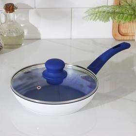 Сковорода кованая Доляна «Свиристель», d= 20 см, со стеклянной крышкой, индукция