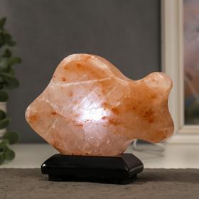 Соляной светильник с диммером 'Рыбка' LED (диод цветной) USB, 100% гимал.соль, 11х14х3 см Ош