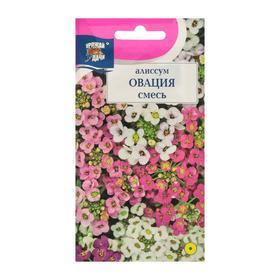"""Семена цветов Цв Алиссум """"Овация"""",  смесь,0,1 гр"""