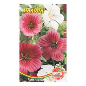 Семена цветов Малопа 0,1 г Ош