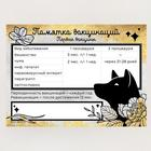 Обложка для ветеринарного паспорта и памятка для собаки - Фото 5