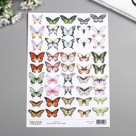 """Набор картинок для декорирования Бабочки 1"""" 21х30 см"""