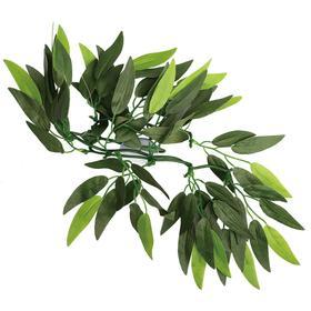 """Растение для террариума """"Рускус"""", 30 см"""