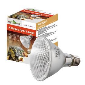Лампа галогеновая, 50 Вт Ош
