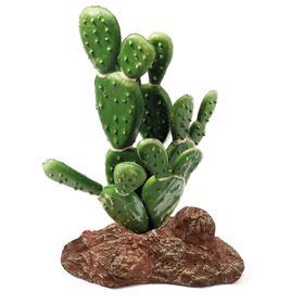 """Растение для террариума """"Опунция"""", 9,5 х 6 х 14 см"""