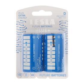 Батарейка солевая Tesla Blue, D, R20-2B, 1.5В, блистер, 2 шт.