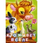 Кто живет в селе? Литературно-художественное издание для чтения родителями детям. Панасюк И.С.