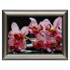 Картина 'Розовые орхидеи' 13х18(16х21) см Ош