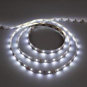 Светодиодная лента URM, 60 LED/м, 4.8 Вт/м, 12В, 10-12 Лм, IP22, 6500К, 5 м