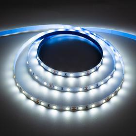 Светодиодная лента URM, 60 LED/м, 4.8 Вт/м, 12В, 18-20 Лм, IP22, 6500К, 5 м