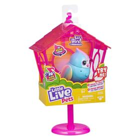 Интерактивная игрушка птичка в скворечнике «Твитти-Радуга»