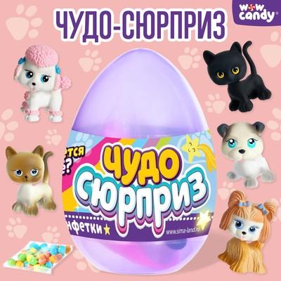 Игрушка в яйце «Чудо-сюрприз: Зверята», МИКС - Фото 1