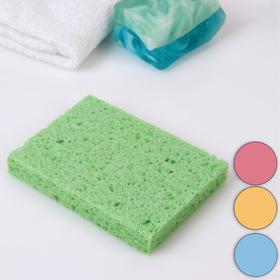 Спонж для умывания «Прямоугольник», 11,5 × 8,5 см, цвет МИКС Ош