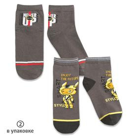 Носки для мальчиков, размер 12-14 см, цвет серый, 2 пары